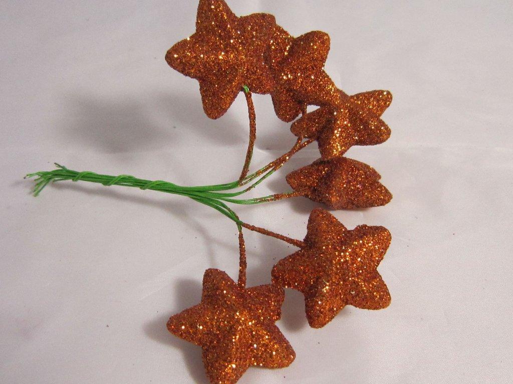 0004026 svazek hvezdicky na dratku medene 6 ks