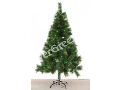 0001596 borovice 184 cm