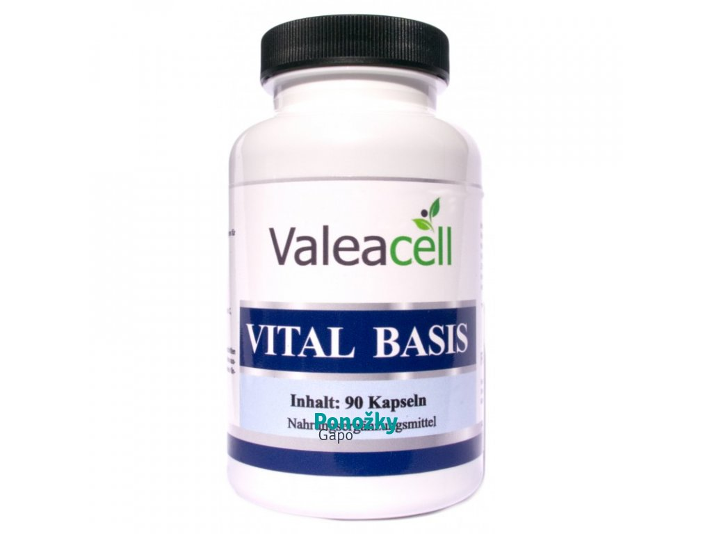 VITAL BASIC