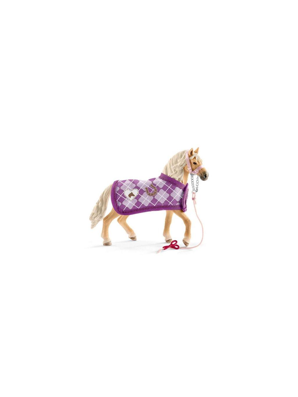 set andaluský kůň a módní doplňky