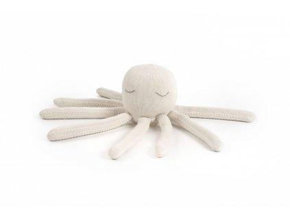 Chobotnička šedá - Středně velká krémová