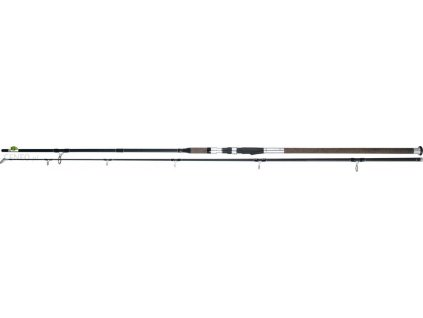 Prut  TEAM DRAGON Silver Edition Catfish 3.30/100-300g
