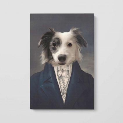 portrety domacich mazlicku aristokrat