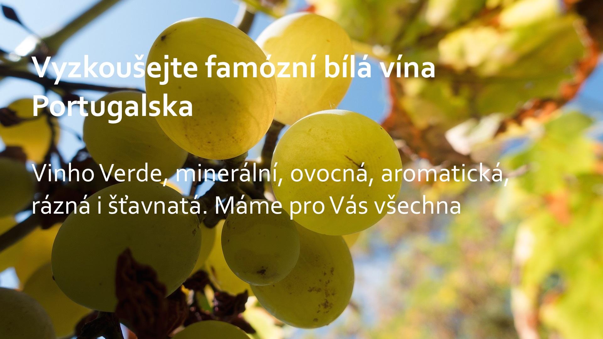 bila vina