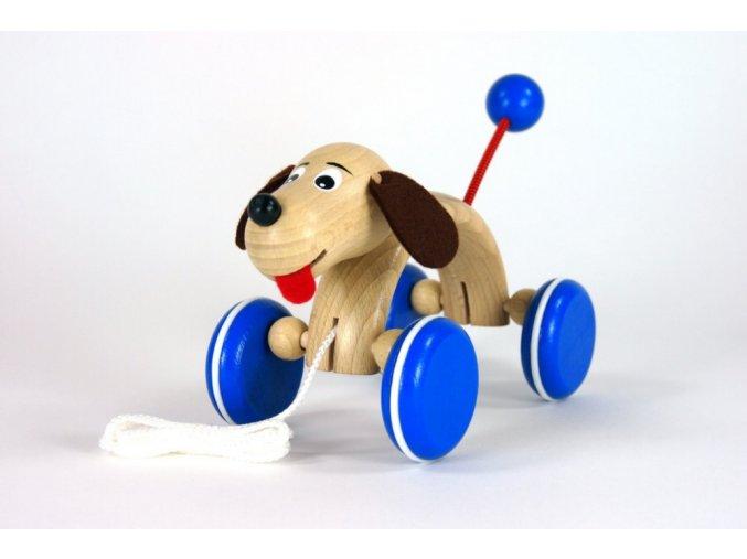 Tahací pes Max