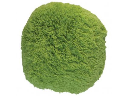 puf chlupatý zelená