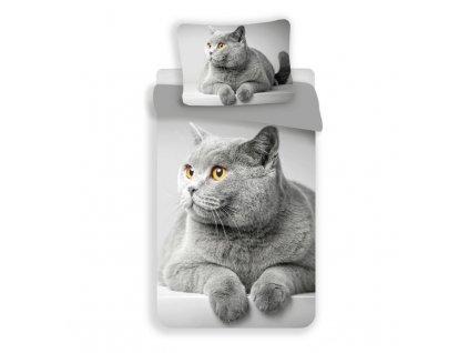povlečení 3D kočka šedá