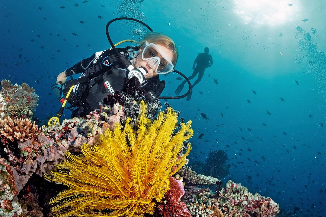 Potápěčské kurzy září - prosinec 2021