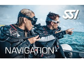 Presentation Navigation