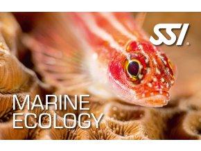 Presentation Marine Ecology