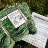 T-pyri 50ks - Parazitické hlístice > Dravý roztoč proti škůdcům v sadech T-Pyri