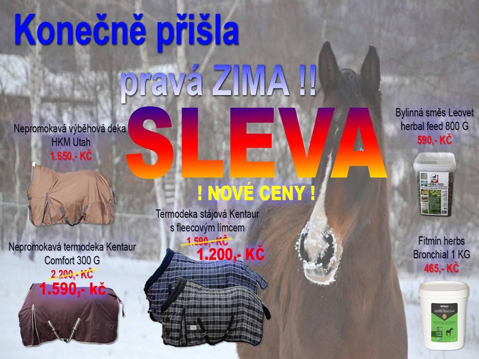 akce zima koně