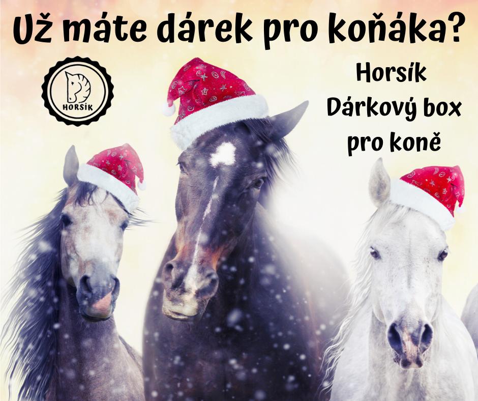 Horsík dárek pro koně