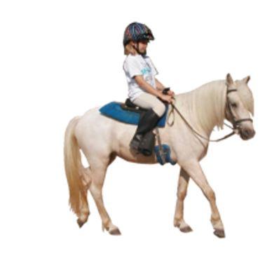 Děti a pony