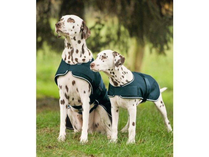 Lehká nepromokavá deka pro psa