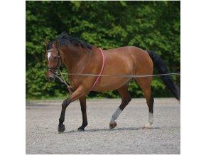 Lonžovací pomůcka (Velikost pony)