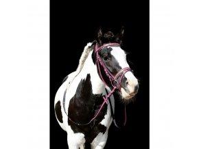 Uzdečka Pony Santa Fe