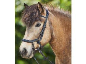 Uzdečka anatomická Waldhausen Pony