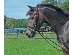TN128901 auf pony