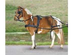 Poprsní postroj nylon Pony (Velikost shetty)