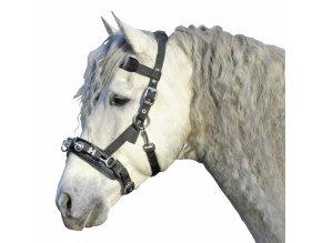 Lonžovací obnosek (Velikost pony)