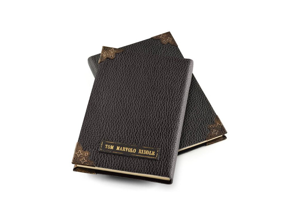 tom riddle s diary