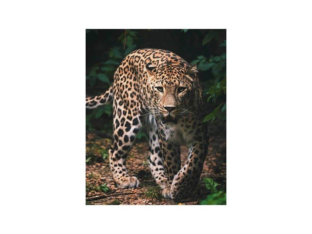772 leopard green mikroflanelova deka 1