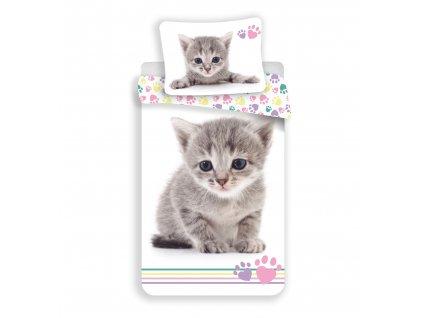 70 x 90 cm -  Bavlněné povlečení 140x200+70x90 cm - Kitten Colour