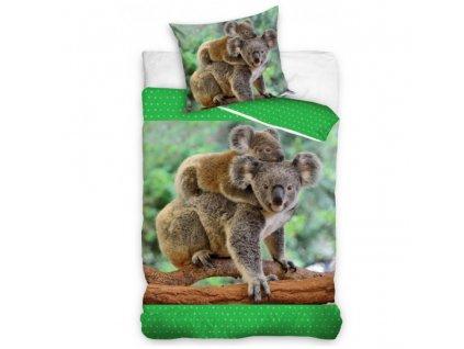 Bavlněné povlečení fototisk se zipem 140x200+70x90  - Medvídek Koala