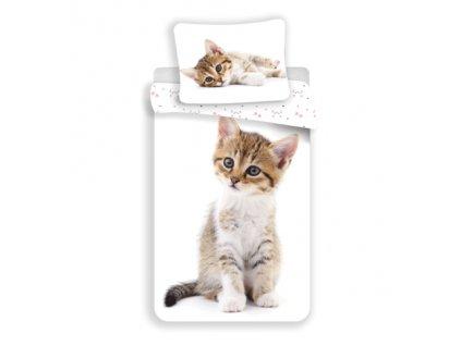 Dětské povlečení -  Bavlněné povlečení 140x200 + 70x90 cm - Kitten white