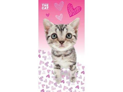 cat 03 bt