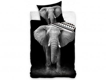 3D fototisk -  Bavlněné povlečení 140x200 + 70x90 cm - Slon africký