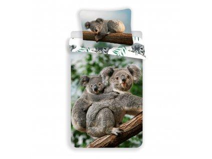 140 x 200 cm -  Bavlněné povlečení 140x200 + 70x90 cm - Koala
