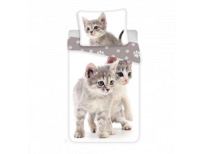 Dětské povlečení -  Bavlněné povlečení 140x200 + 70x90 cm - Kitten Grey