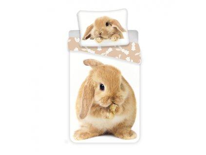 140 x 200 cm -  Bavlněné povlečení 3D fototisk 140x200 + 70x90 cm - Bunny brown
