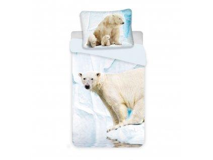 Polar Bear blue