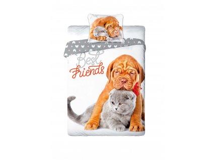 Povlečení BAVLNA Fototisk  140x200 - Hnědý pes a stříbrná kočka