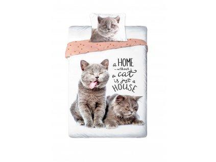 FARO -  Povlečení Nejlepší přátelé kočičky 140x200 70x90