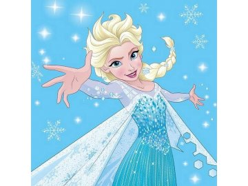 Magický ručníček Ledové Království Elsa 30x30 cm
