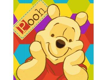Magický ručníček Medvídek Pů color, 30x30 cm