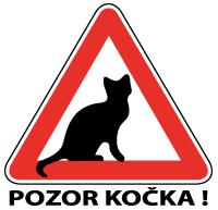 Pozor kočka! z.s. - eshop
