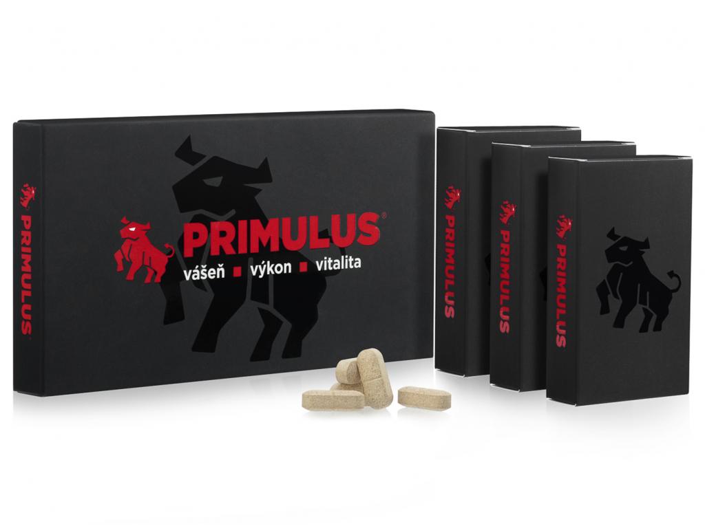 Primulus novy 1