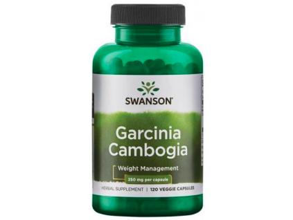 Swanson Garcinia Cambogia 250 mg 120 rostlinných kapslí
