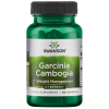 Swanson Garcinia Cambogia extract