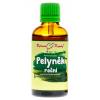 Pelyněk roční bylinné kapky (tinktura) 50 ml 1