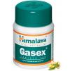 Himalaya Gasex 100 tablet ovlivňuje trávení, hladinu cukru a cholesterolu.png