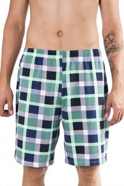 Pánské pyžamové kalhoty Leptir 500/09