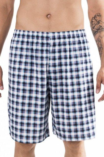 Pánské pyžamové kalhoty Leptir 500/02