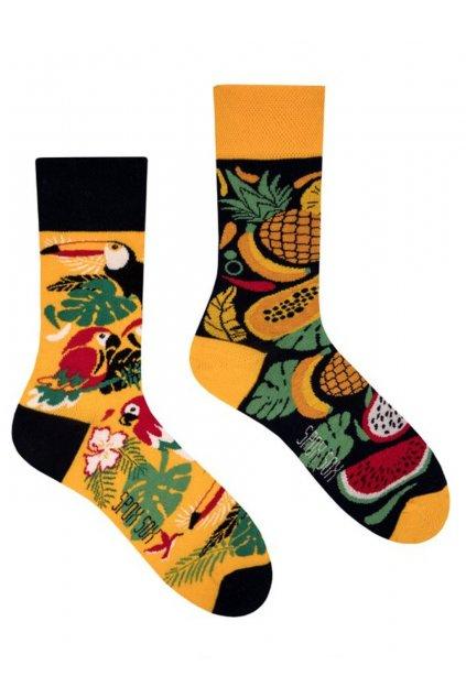 Veselé ponožky Spox Sox tropic