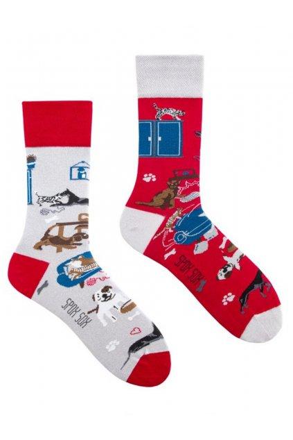 Veselé ponožky Spox Sox pejsek a kočička.